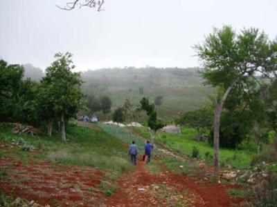 Lovely View from a Hill in St. Elizabeth, Jamaica